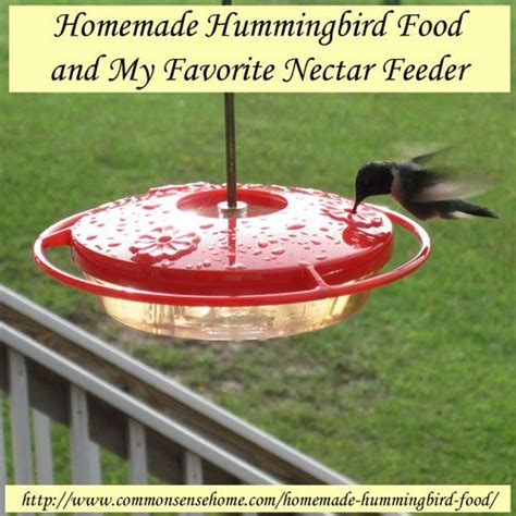 homemade hummingbird food and my favorite nectar feeder