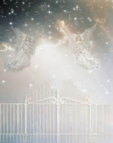 swing wide you heavenly gates heaven s gate beginner photo effects contests