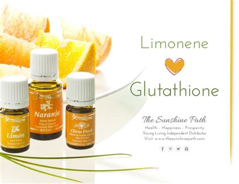 Liver Aids For Detoxing After Surgery by Living Essential Oils Glutathione Glutathione Is