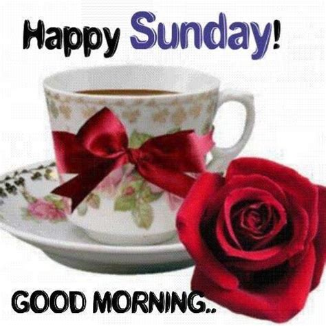 Imagenes Good Morning Happy Sunday | happy sunday good morning pictures photos and images for