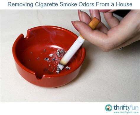 remove smoke smell from couch 1000 images about cigarette smoke removal on pinterest