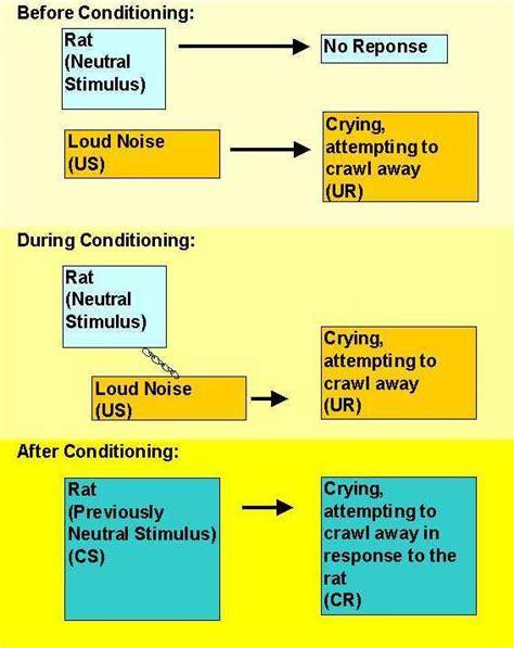 classical conditioning diagram classical conditioning part 3