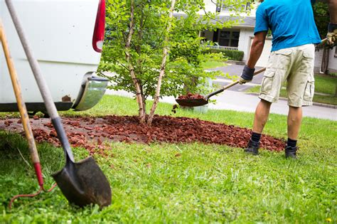landscaping companies hiring 4 advantages of hiring a professional landscaping company