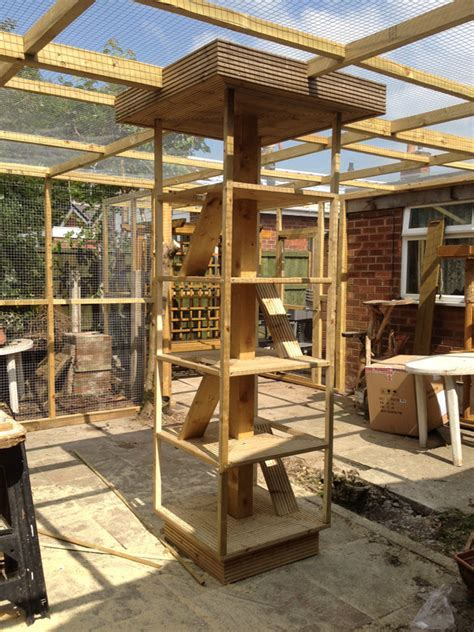 Outside cat enclosure/play area   Carpentry & Joinery job