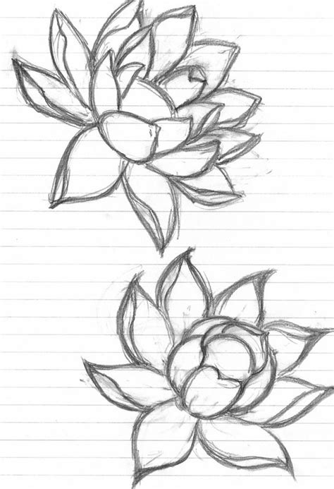 The 34 Best Lotus Flower Tattoo Outline Images On Lotus Flower Outline