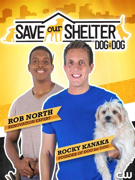 dramanice save the family watch save our shelter season 2 watchseries