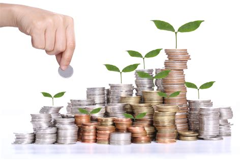 wealth management credence international and the importance of wealth