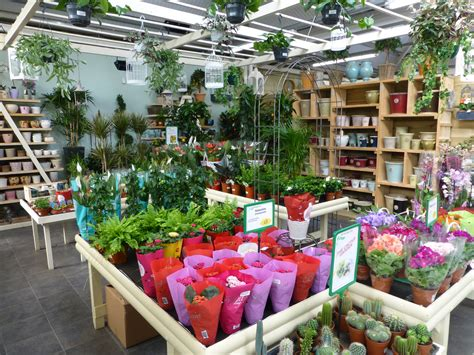 28 best garden centre shop uk stock interior of commercial plant and flower garden center
