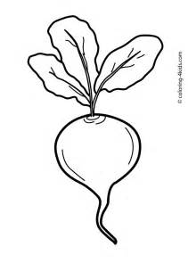 beet color beet vegetable coloring page for printable fructe