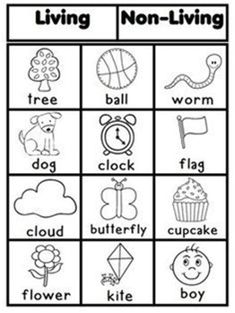 Living And Nonliving Worksheets by Free Worksheets Living And Non Living Things Worksheets