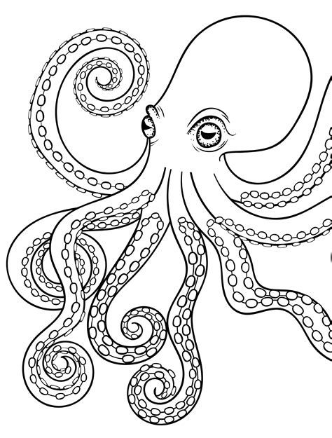 octopus coloring page adults 18 absurdly whimsical adult coloring pages page 9 of 20