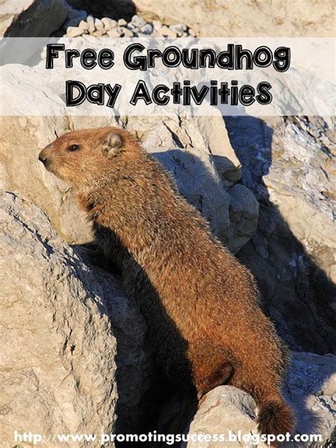 groundhog day up groundhogs day teachers pay teachers promoting success