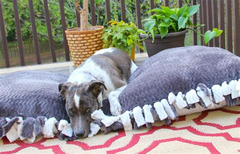 no sew dog bed no sew dog bed miss frugal mommy