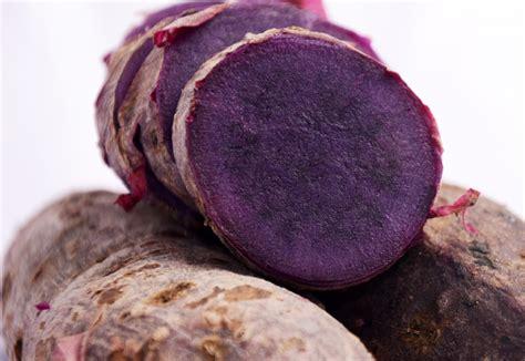 Benih Ubi Ungu khasiat antikolesterol ubi jalar ungu bebeja