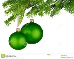 green baubles hanging from fresh green twigs
