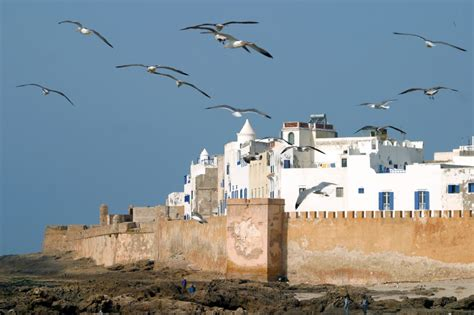 almas de marruecos historias sobre la cultura marroquã edition books essaouira el pueblo azul y blanco de marruecos