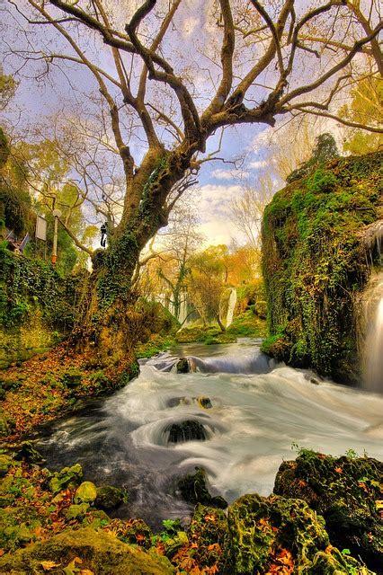 tree waterfall landscape  photo  pixabay