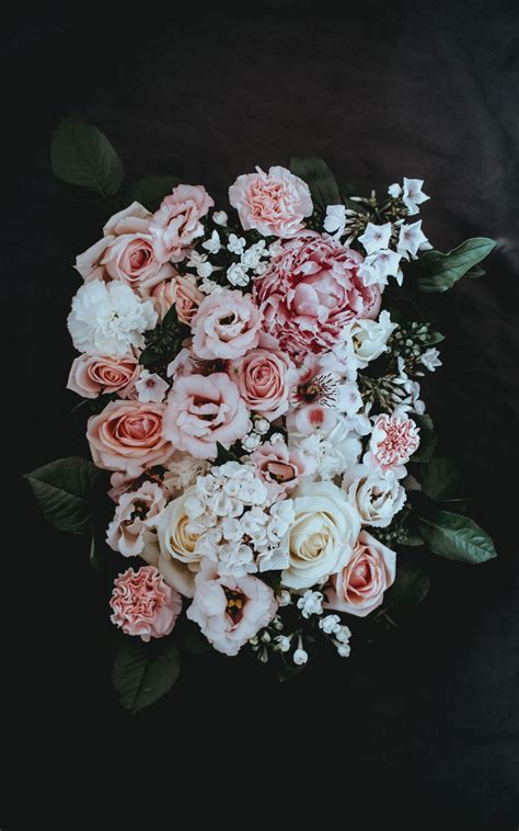 flowers images free images on unsplash