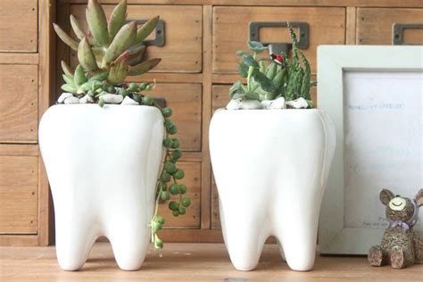 tooth shaped planter white ceramic plant pot cute tooth shape design