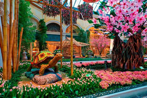 Bellagio Flower Garden Bellagio Welcomes With A Dynamic Celebration Of Japanese Culture Through Two Stunning