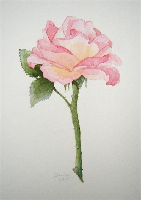 best 25 watercolor ideas on painting flowers painting flowers and