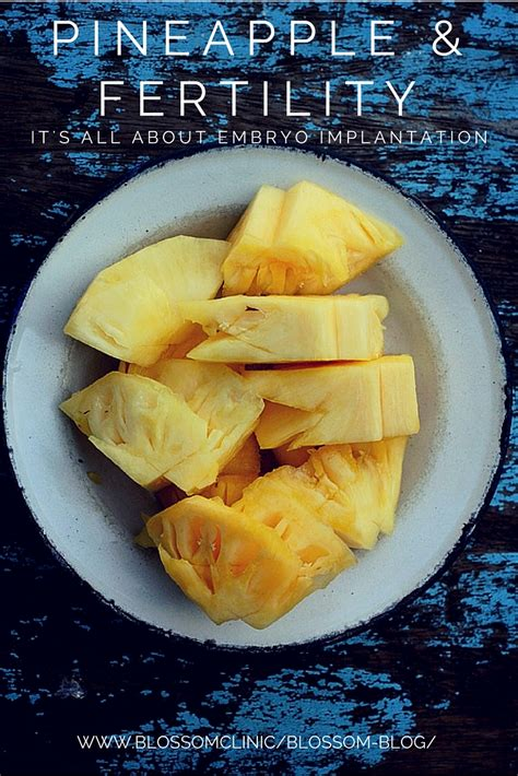 Readers Week 2007 Dishes A Great Tip On Keeping Your During The Warmer Months by Pineapple And Ivf Success It S All About Embryo