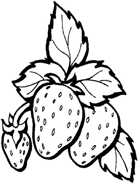 coloring page for strawberry fresh strawberry coloring pages fantasy coloring pages