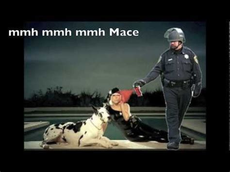 Pepper Spray Meme - casually pepper spray everything cop video gallery know