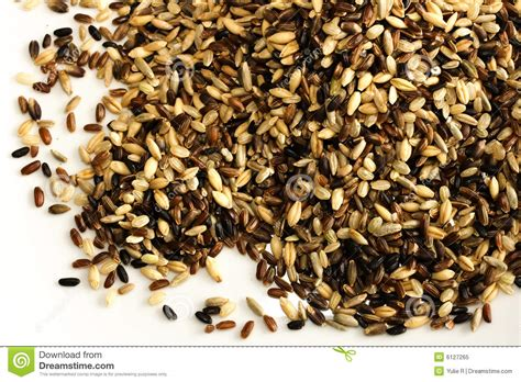 Multi Rice multi grain rice mix isolated on white royalty free stock