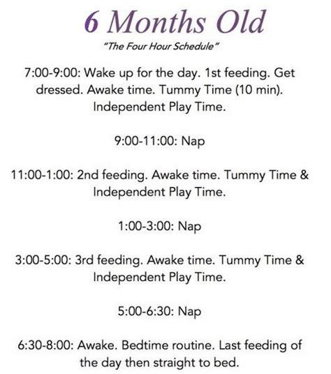 protein 6 month baby baby diet 6 months protein diet foods list