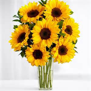 Vases And Flowers Online New Baby Flowers Send Baby Flowers And Gifts Online
