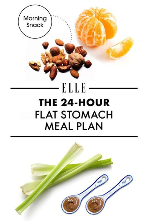 flat belly 365 the gut friendly superfood plan to shed pounds fight inflammation and feel great all year books flats and marketing plan on