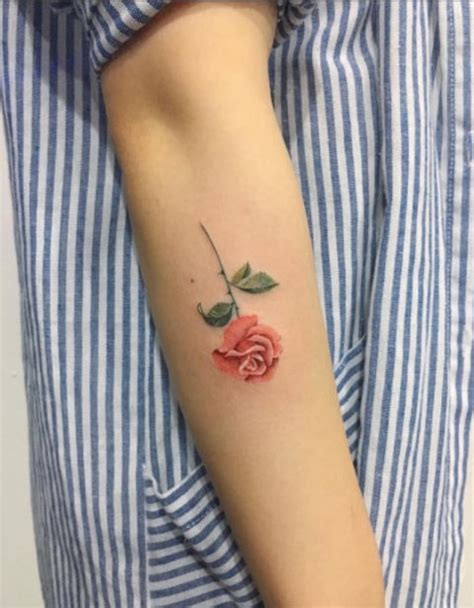 delicate rose tattoo tattoo collections