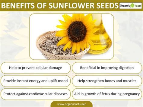 top 28 what happens if you a sunflower seed sunflower