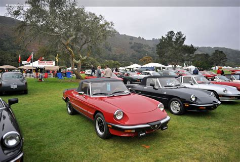1986 Alfa Romeo Spider Graduate by 1986 Alfa Romeo Spider Graduate Images Photo 86 Alfa
