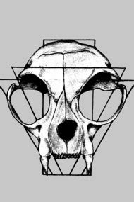 design by humans hybridpanda search results for skull t shirts