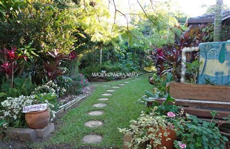 backyard permaculture australia image gallery permaculture garden