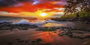 hawaii photographers greg essayan photography