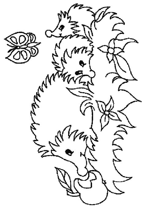 hedgehog coloring pages n 32 coloring pages of hedgehogs