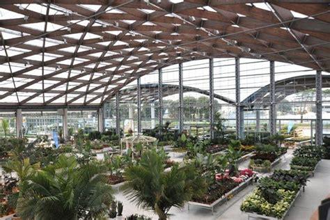 giardini della versilia garden center giardini della versilia antonio rafanelli