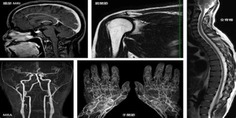 mri thesis topics mri magnetic resonance imaging assignment point