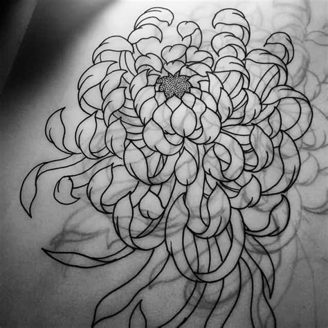 chrysanthemum tattoo design japanese chrysanthemum flower drawing www pixshark
