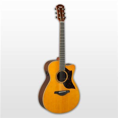 acoustic guitars guitars basses musical instruments