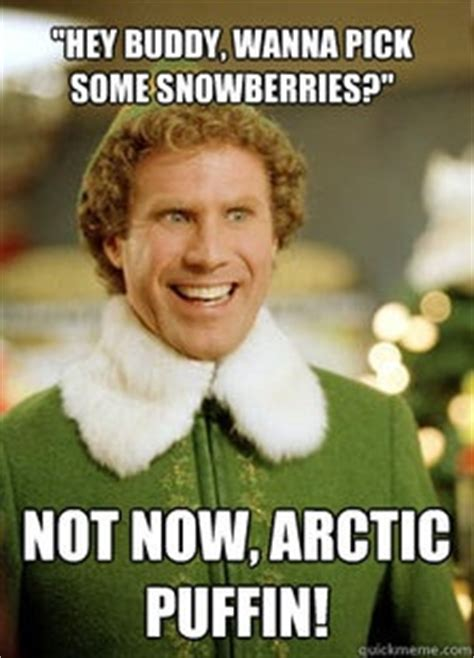 Hey Buddy Meme - 22 best images about elf bored on pinterest christmas