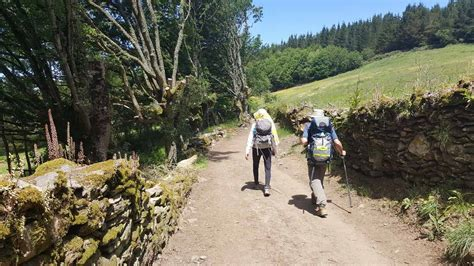 il camino walk walking spain s famed camino my upcoming pilgrimage