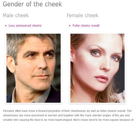 high cheek bones vs low low cheekbones gallery