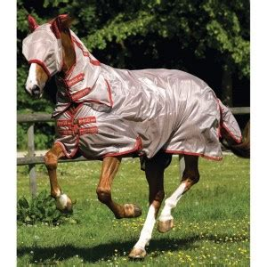 amigo mio fly rug summer fly protection for horses naylors
