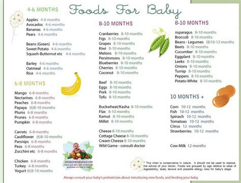 printable recipes for baby food 17 best images about homemade baby food on pinterest