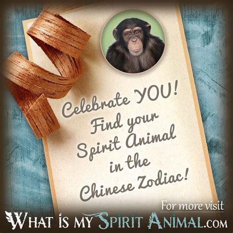 new year animals zodiac what is my spirit animal by birthday zodiac animals