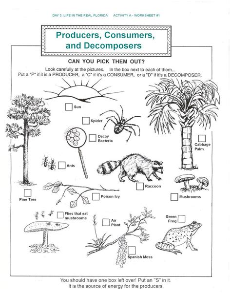 Ecology Worksheets by Decomposers Worksheets For Archbold Biological
